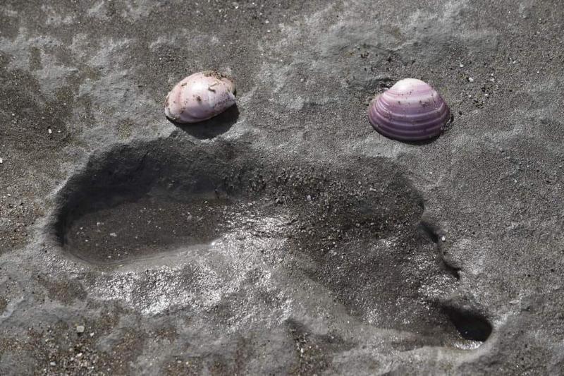 Huellas Humanas de 7000 años en la Reserva Natural Pehuen Co Monte Hermoso